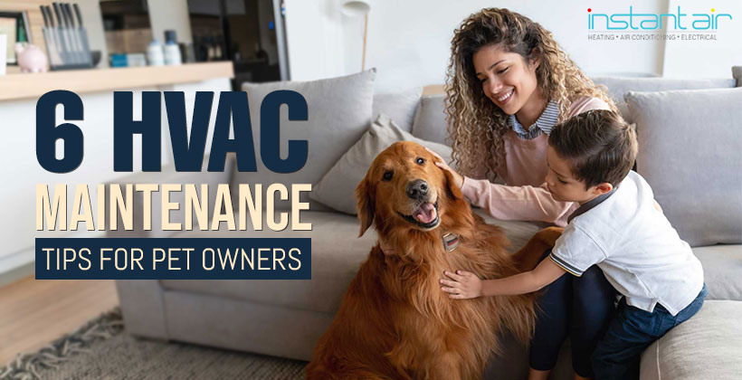 6 HVAC Maintenance Tips For Pet Owners